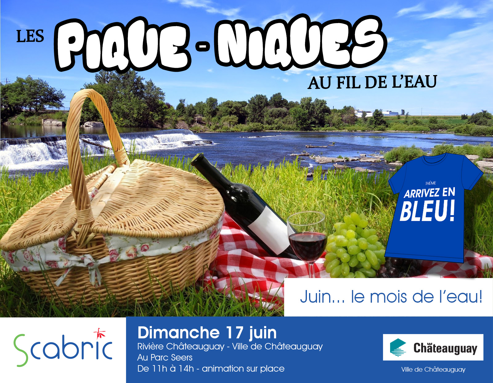 montage picnic Chateauguay